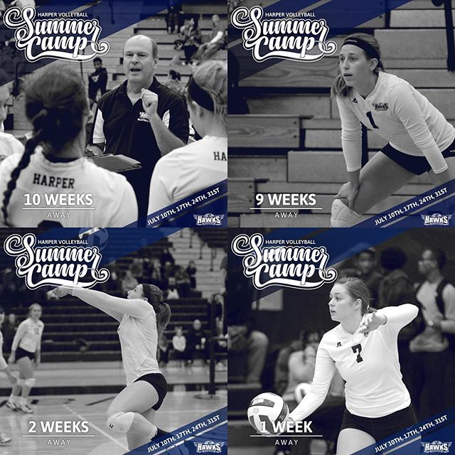 A few examples from a series of social media ads created for the 2018 Harper Volleyball Summer Camp happening this July. #GraphicDesign #SocialMediaMarketing