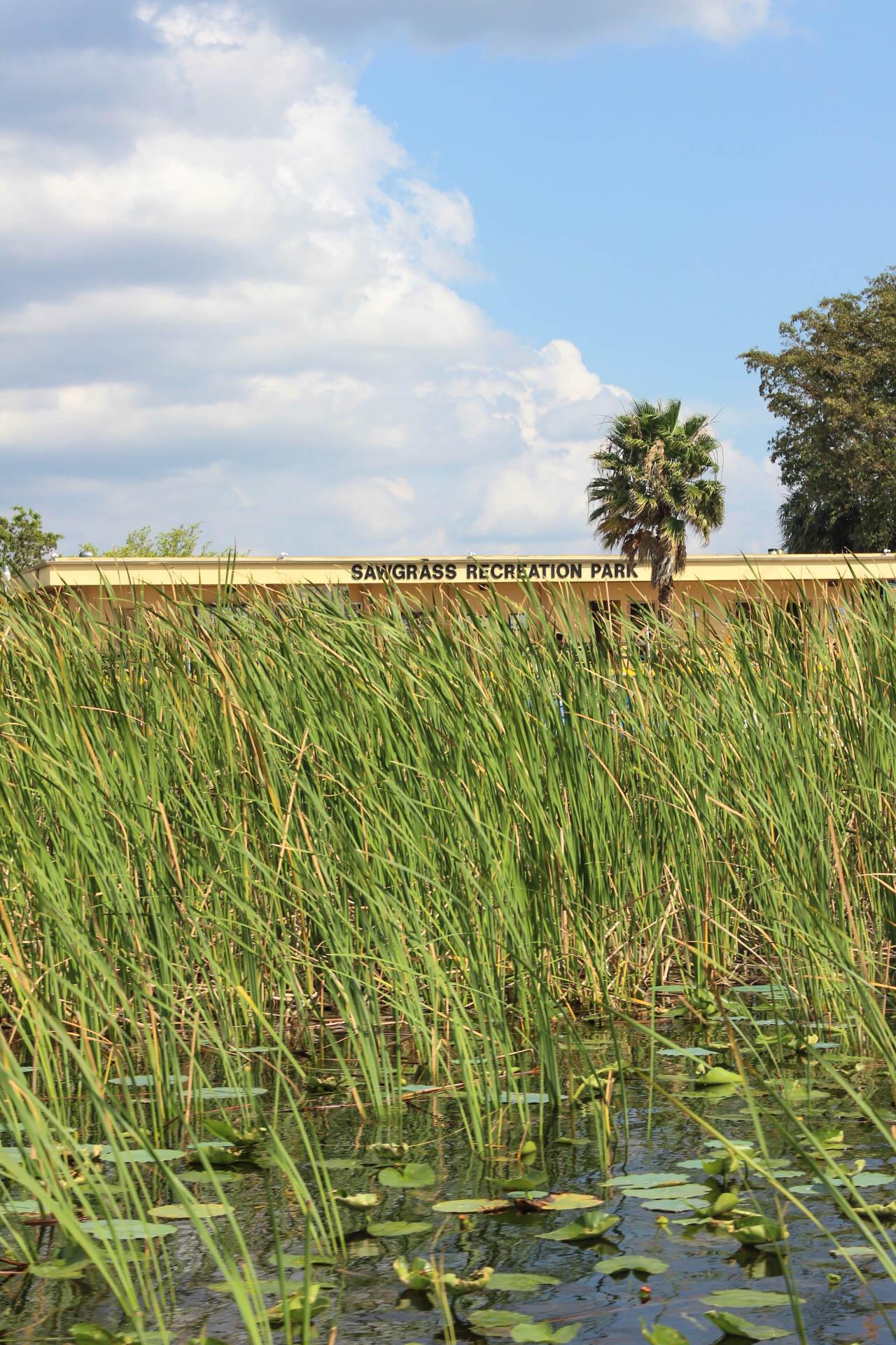 Rec Park View Everglades.jpg