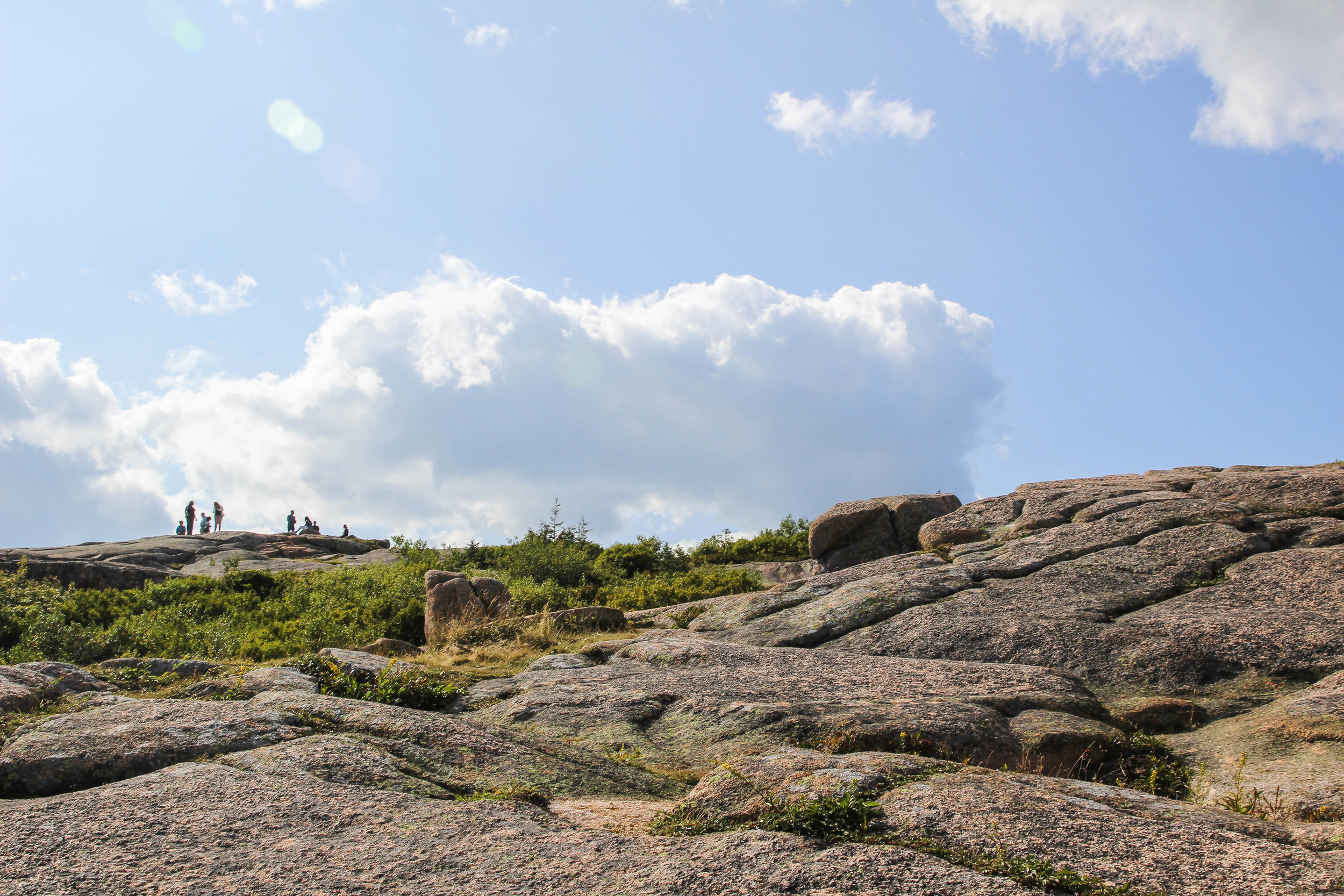 Acadia Collection-12.jpg