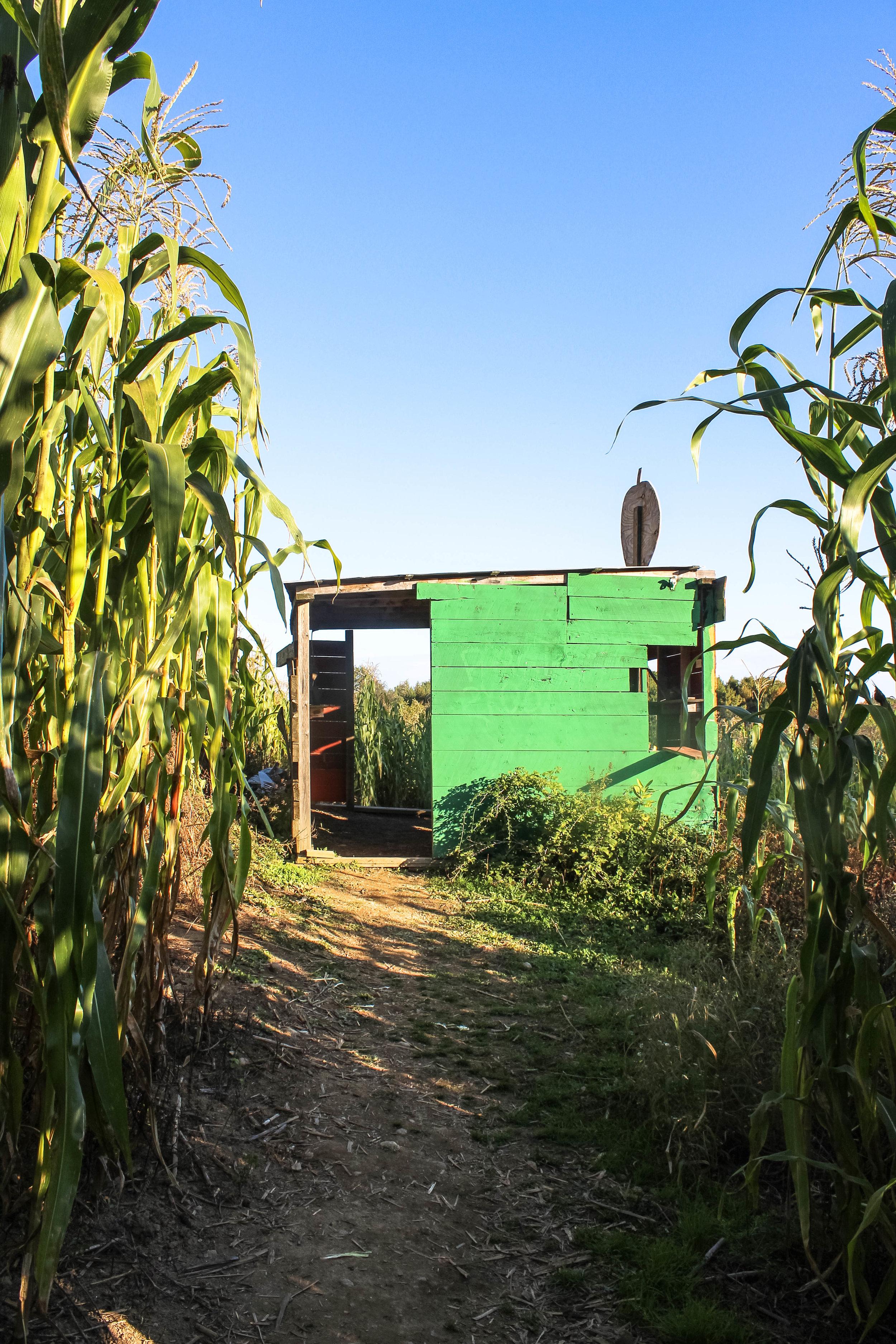 Emery Farm NH-15.jpg
