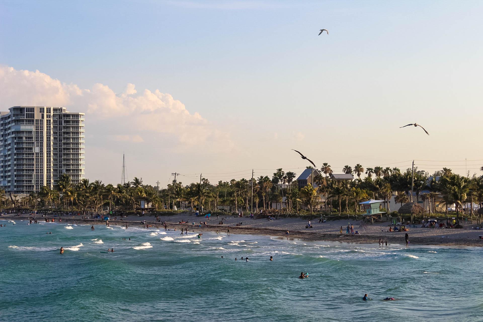 View Dania Beach Florida.jpg