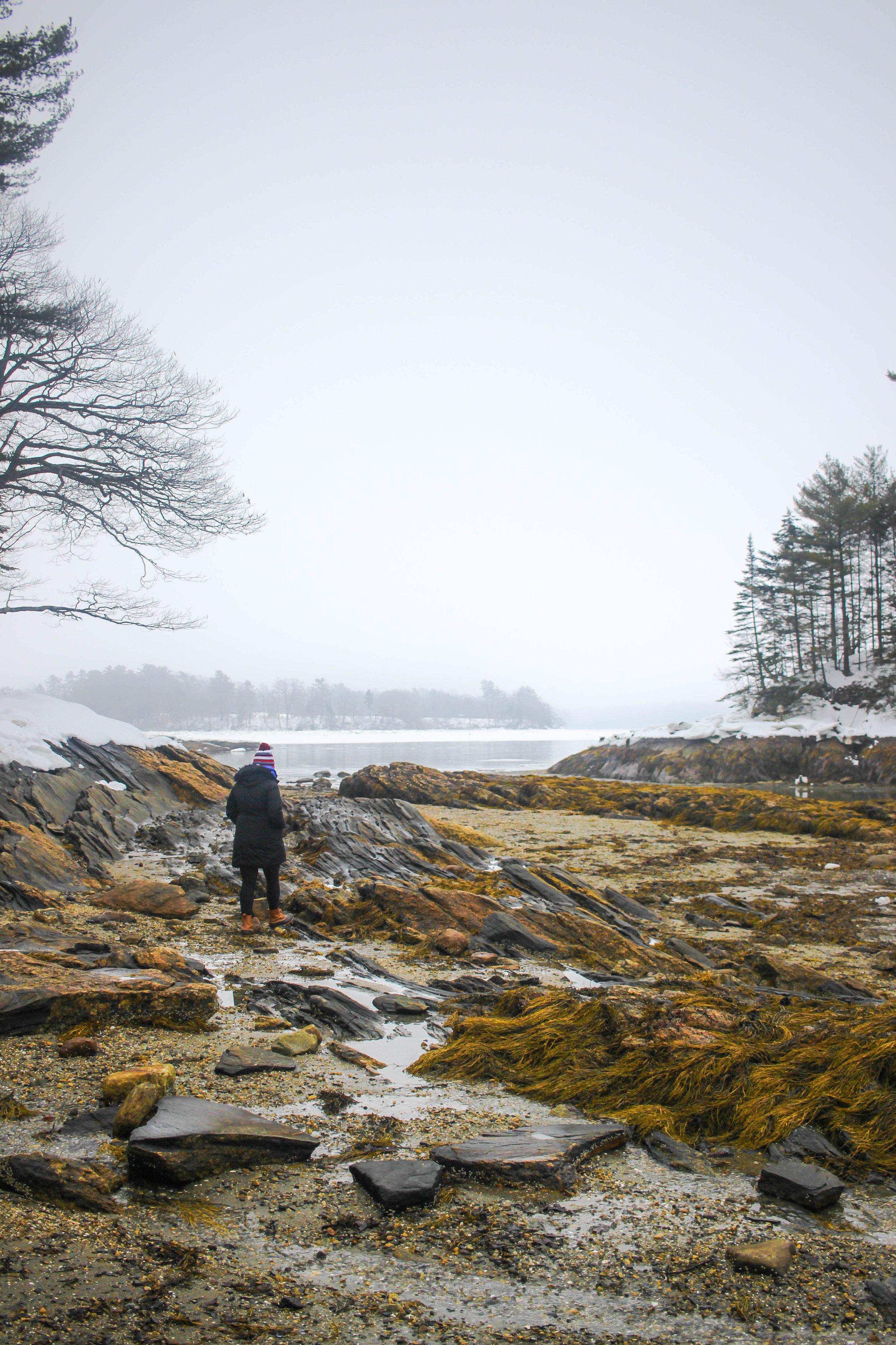 Maine Getaway 2018_-50.jpg