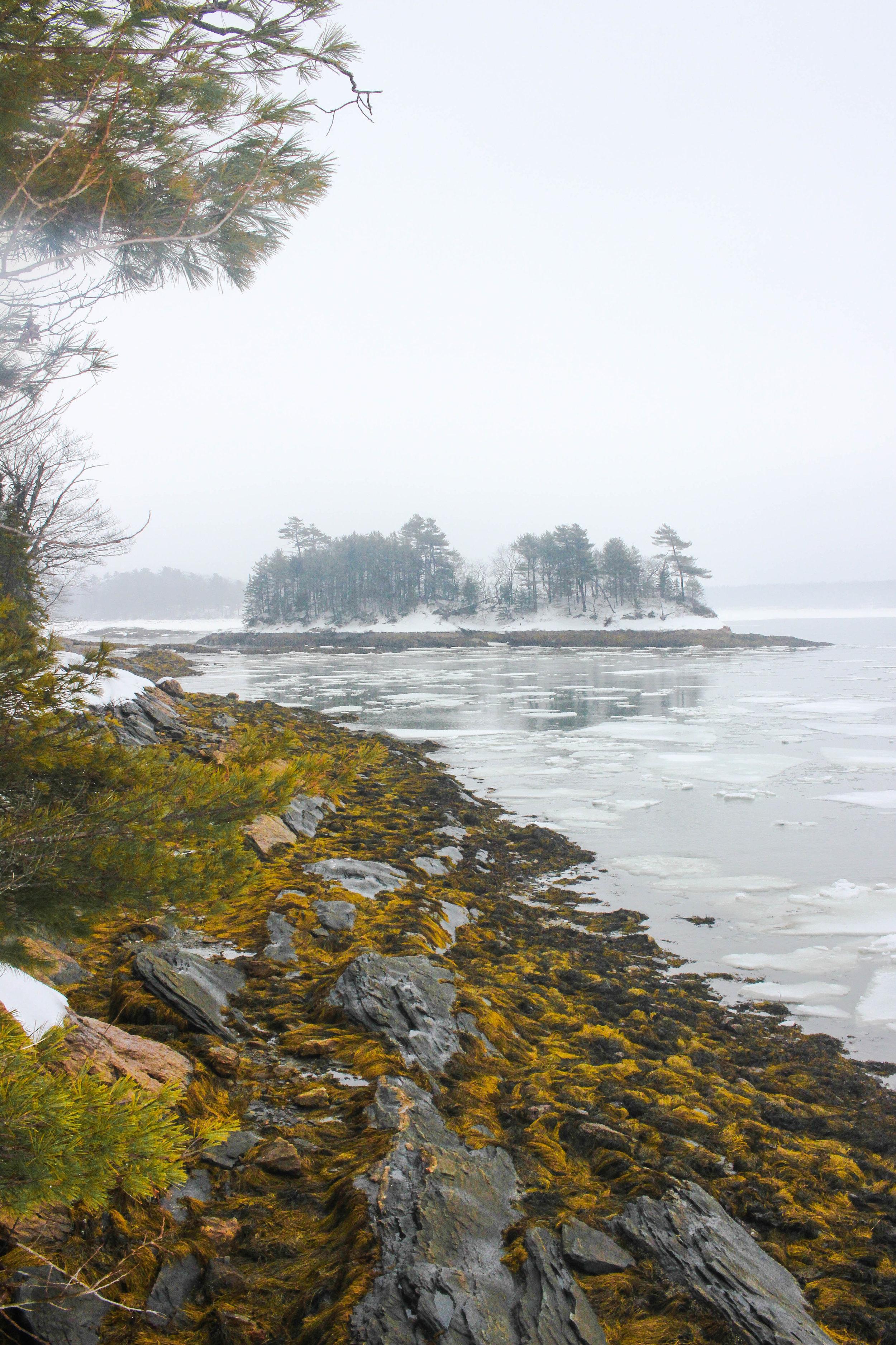 Maine Getaway 2018_-83.jpg
