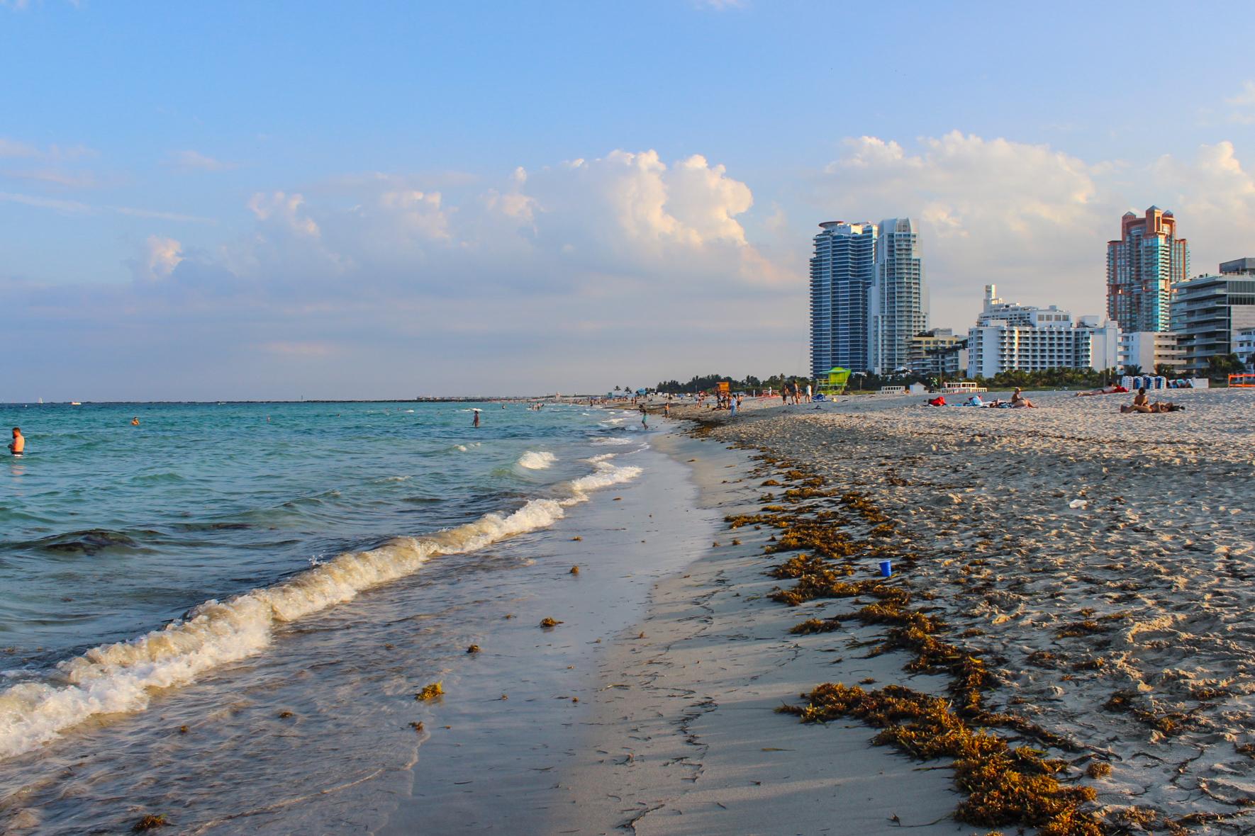 Miami_-6.jpg