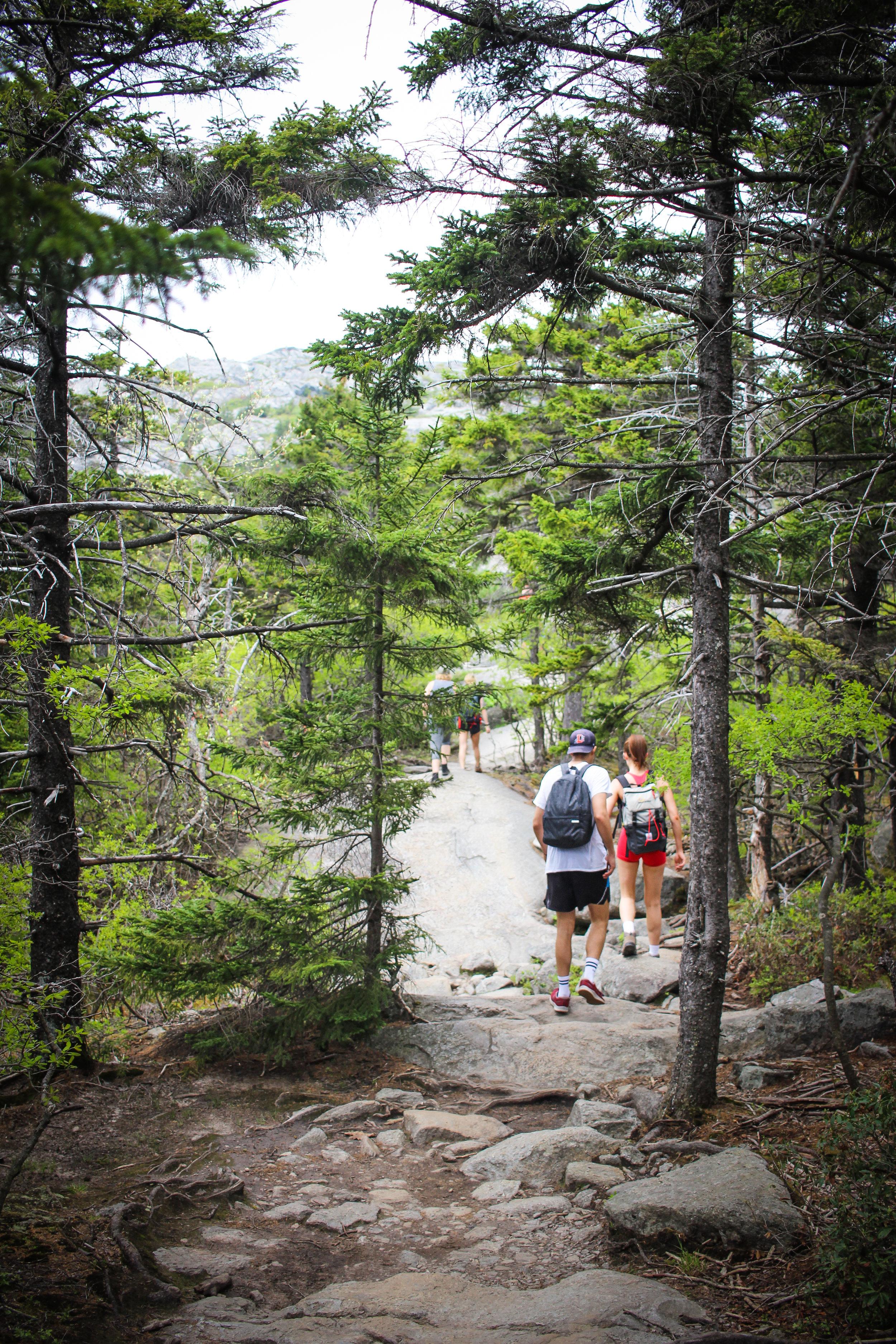 Mount Monadnock_-59.jpg
