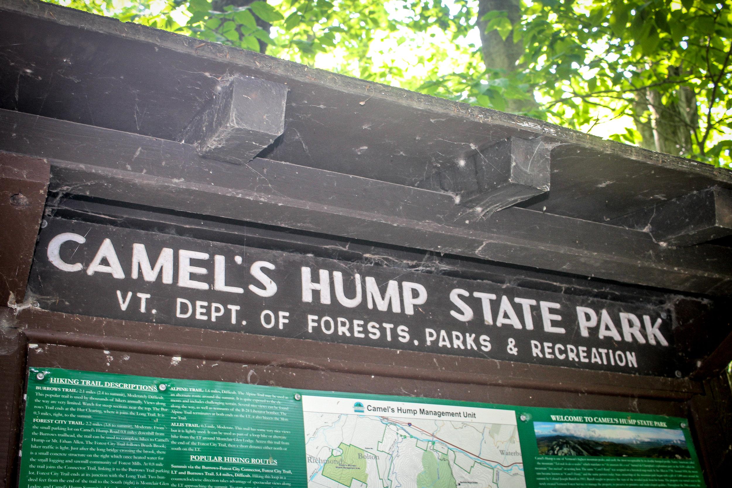 Camel's Hump TWG_.jpg