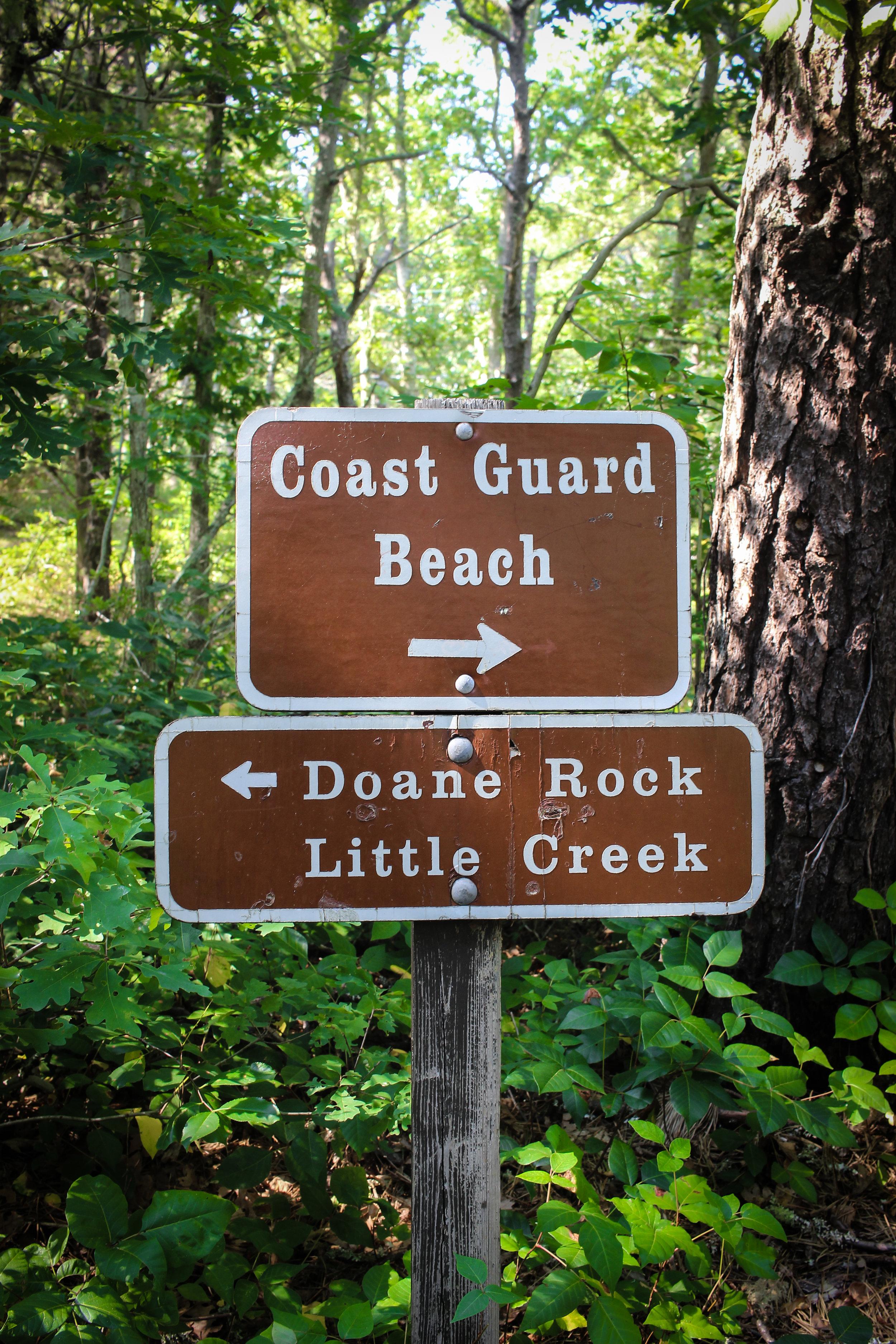 Cape Cod National Seashore TWG_-15.jpg