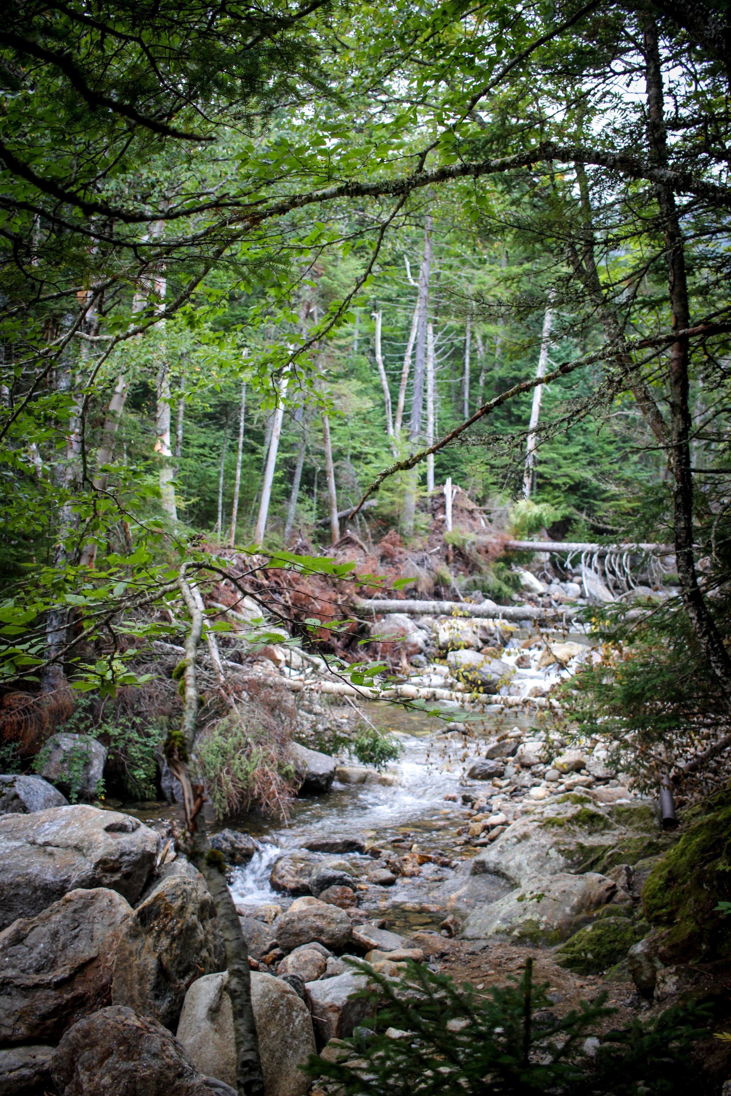 Mount Washington TWG_-9.jpg
