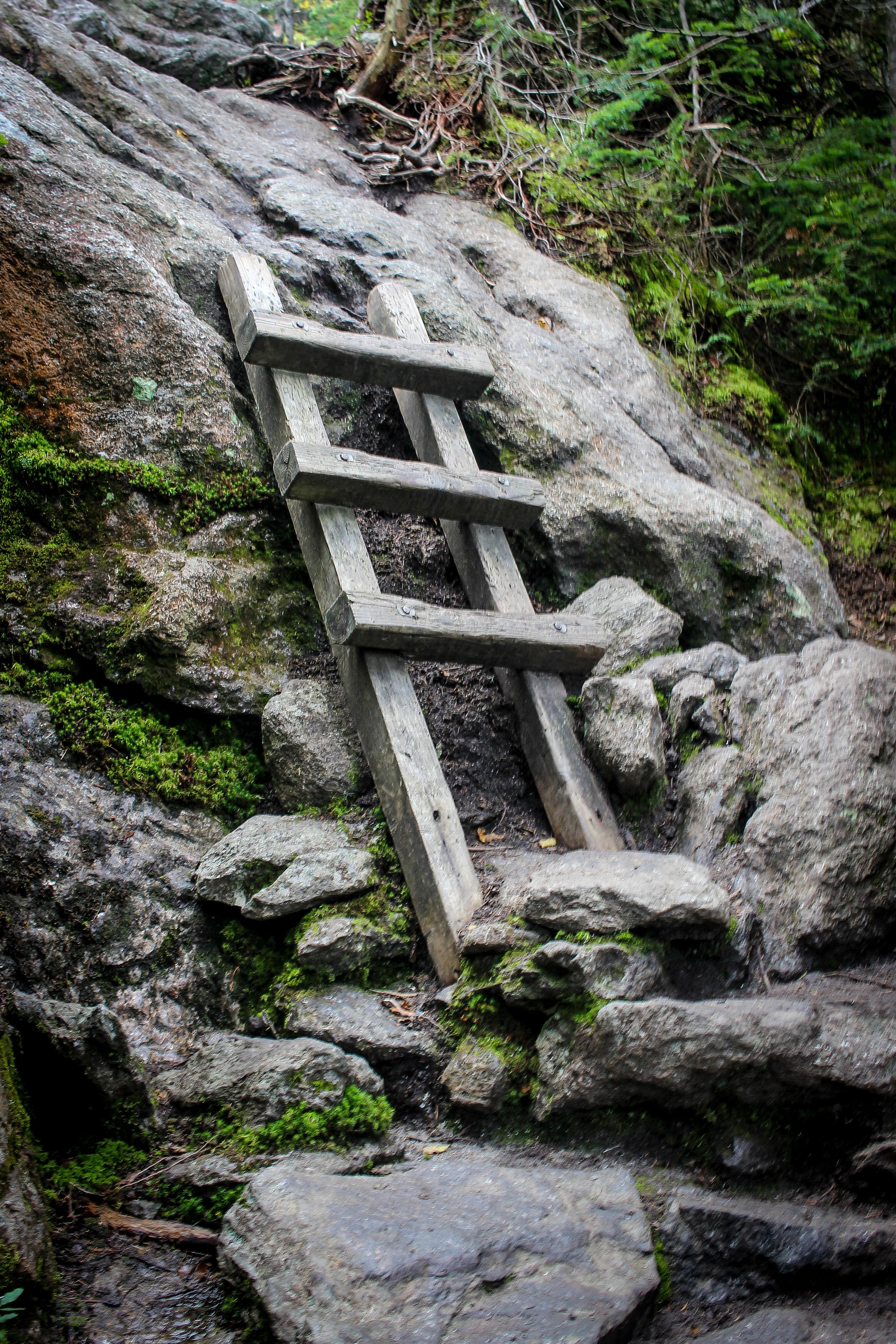 Mount Washington TWG_-56.jpg