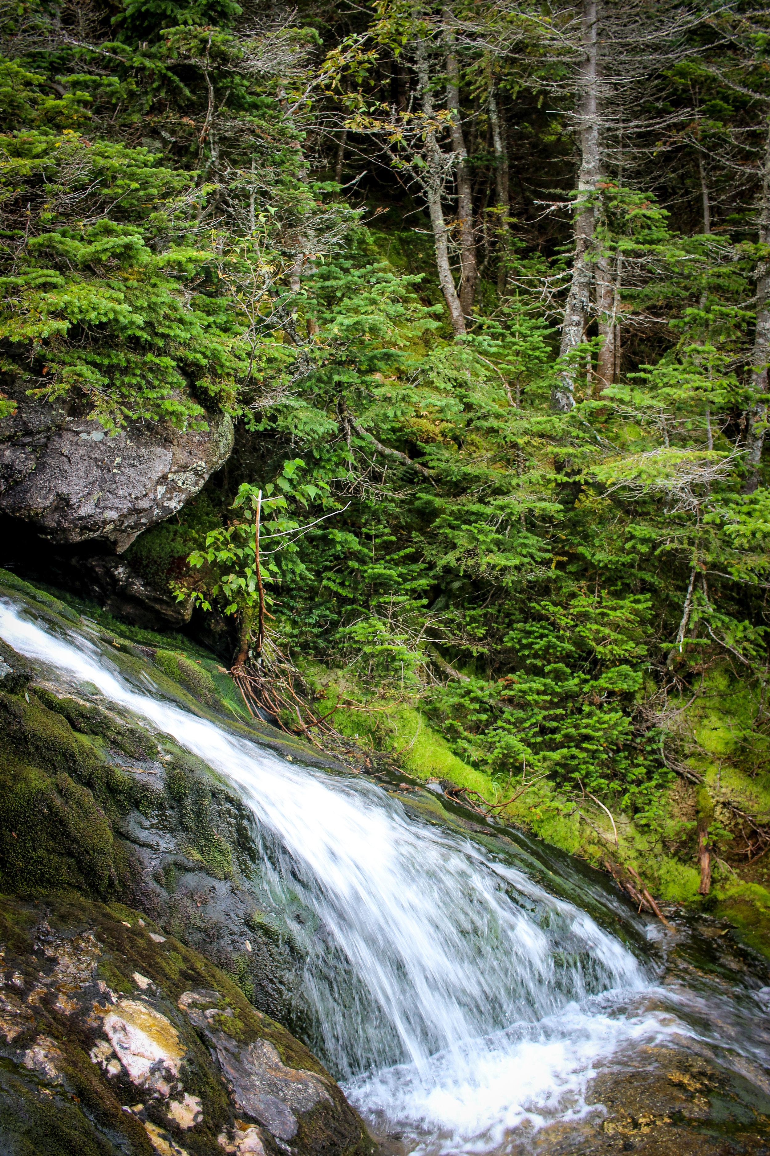 Mount Washington TWG_-59.jpg