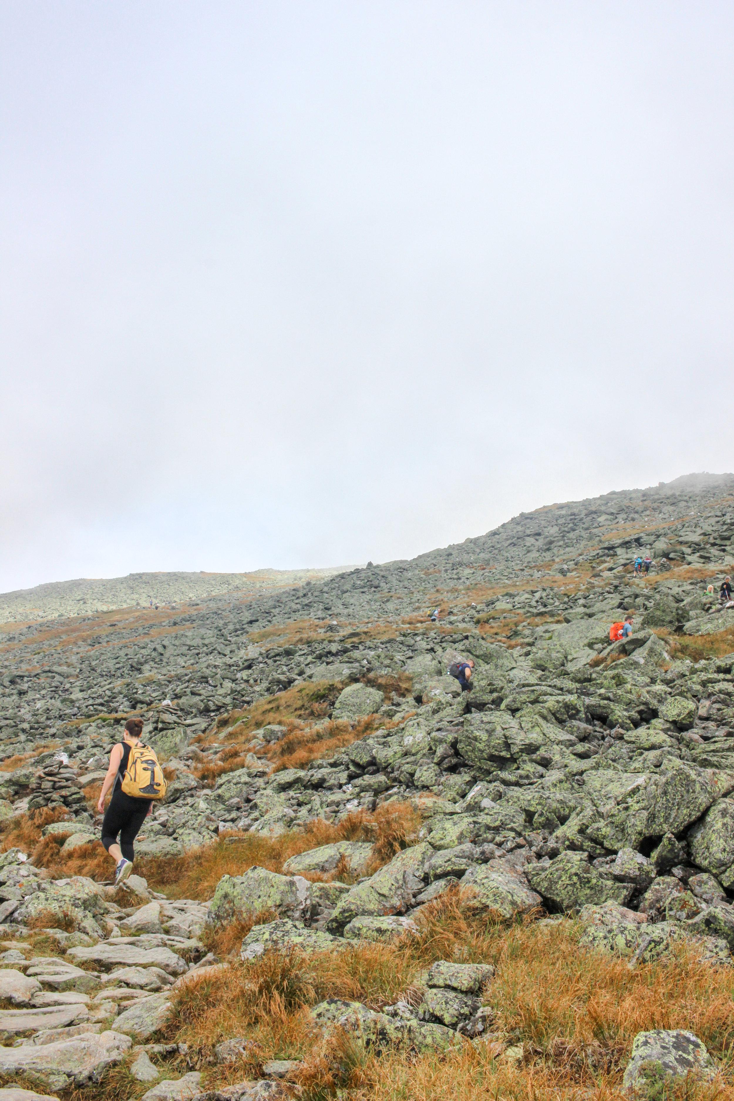 Mount Washington TWG_-143.jpg