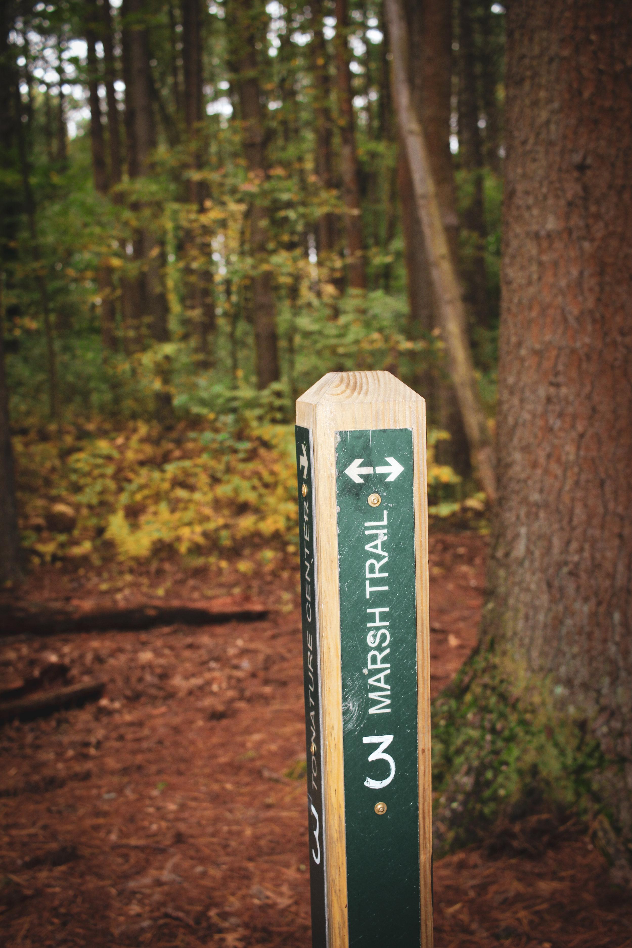 Broadmoor Wildlife Sanctuary TWG-14.jpg