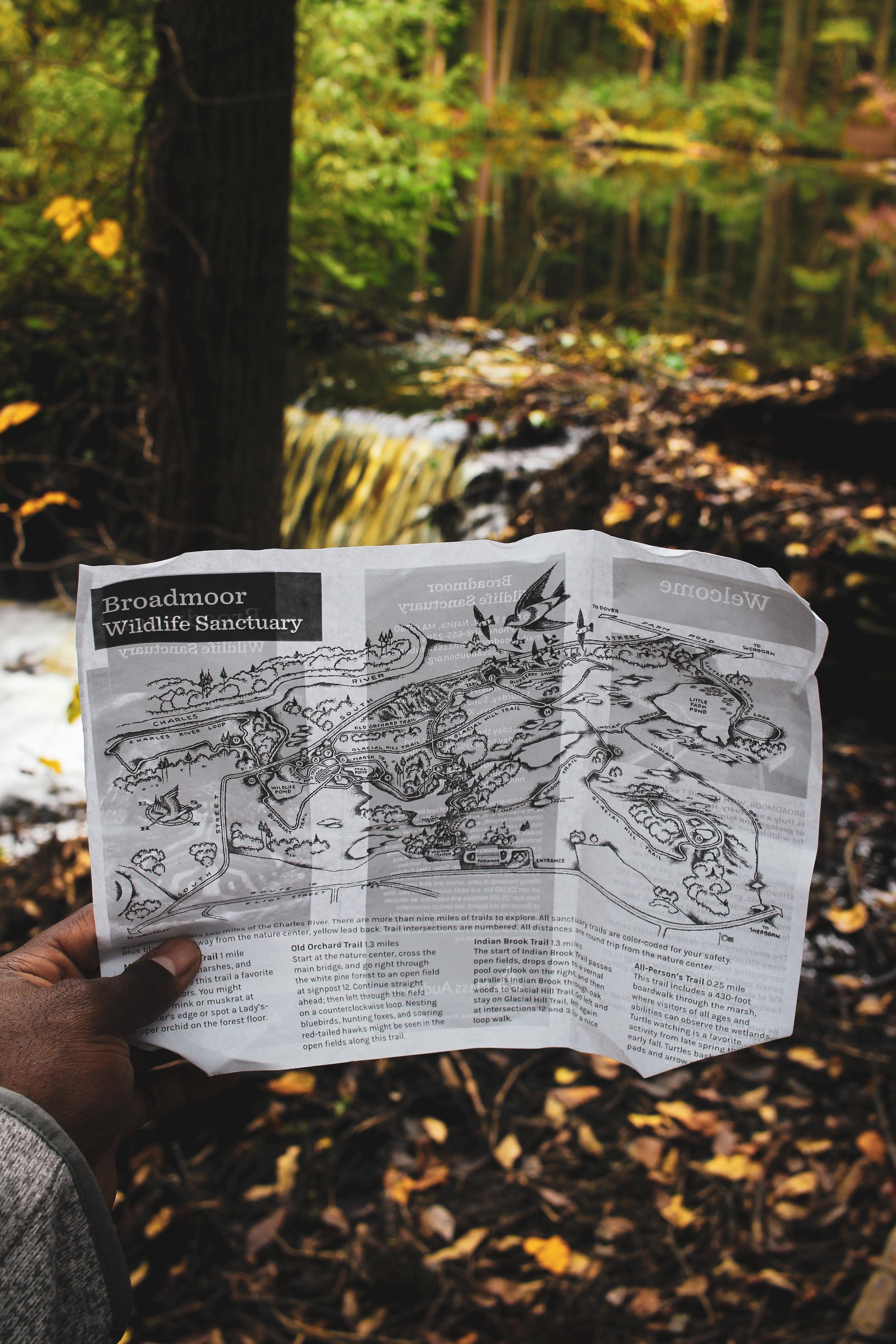 Broadmoor Wildlife Sanctuary TWG-25.jpg