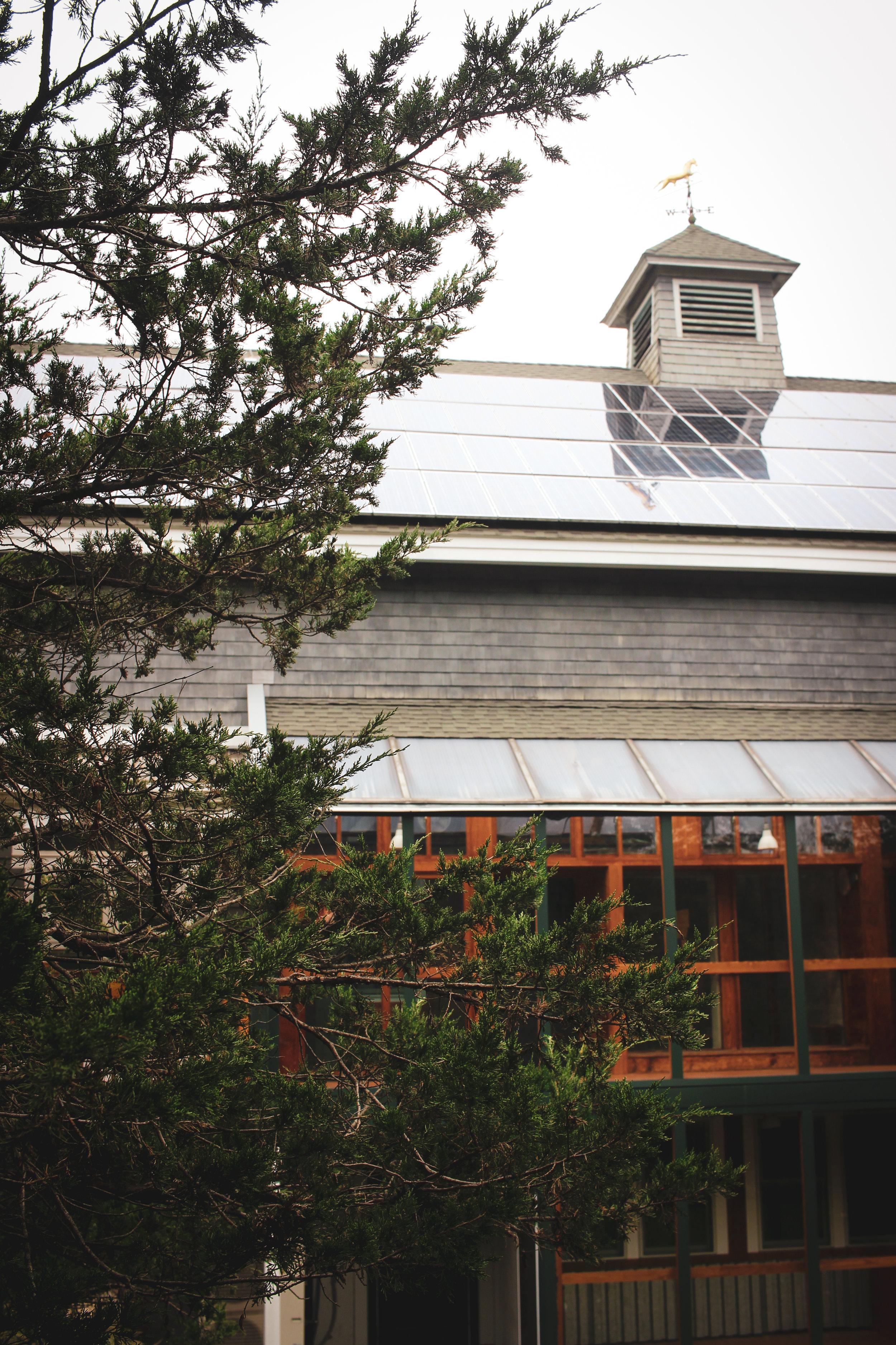 Broadmoor Wildlife Sanctuary TWG-40.jpg