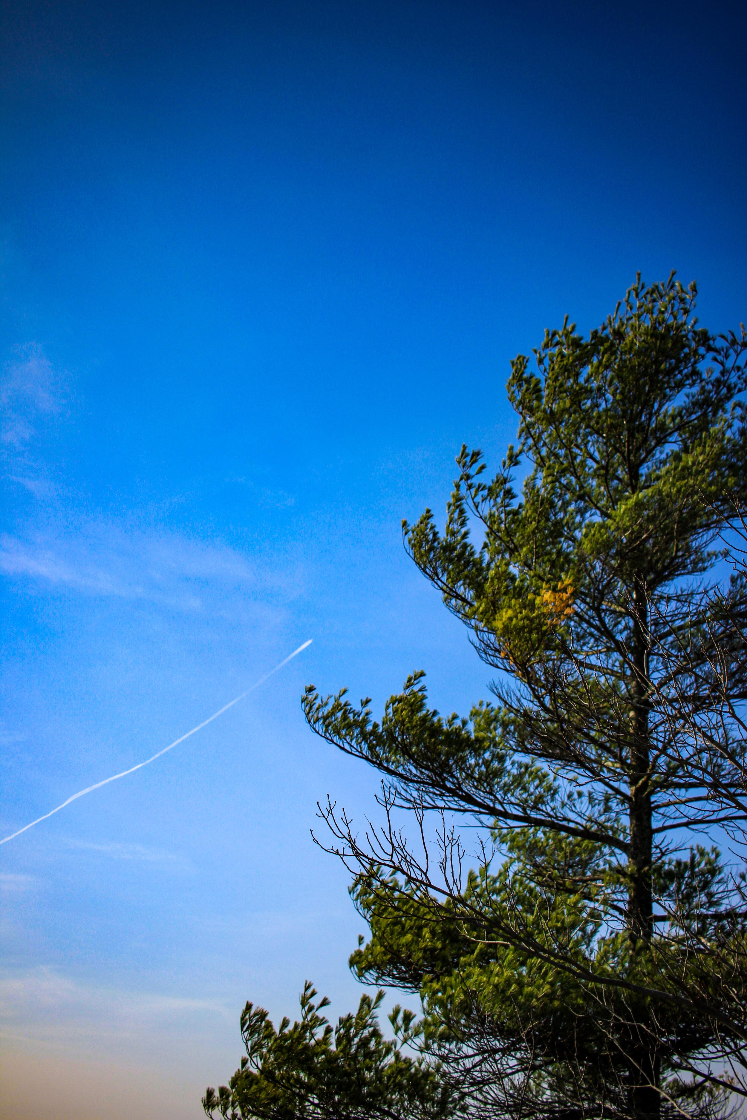 Moose Hill TWG-28.jpg