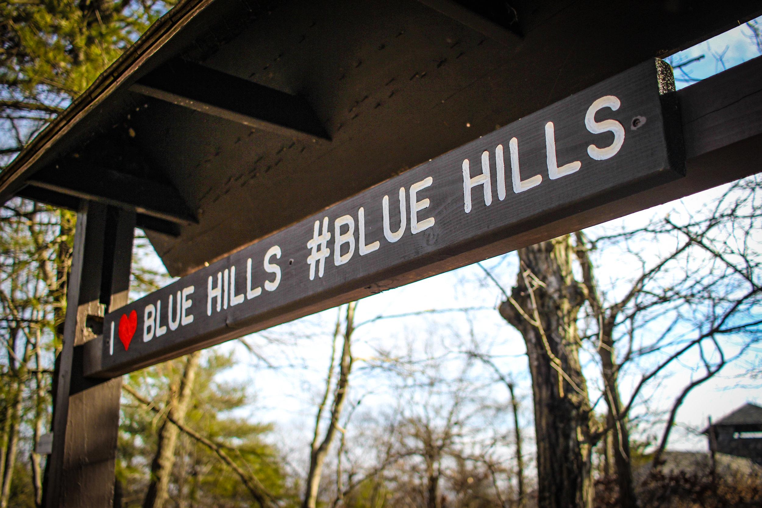 Blue Hills 2019 TWG-11.jpg
