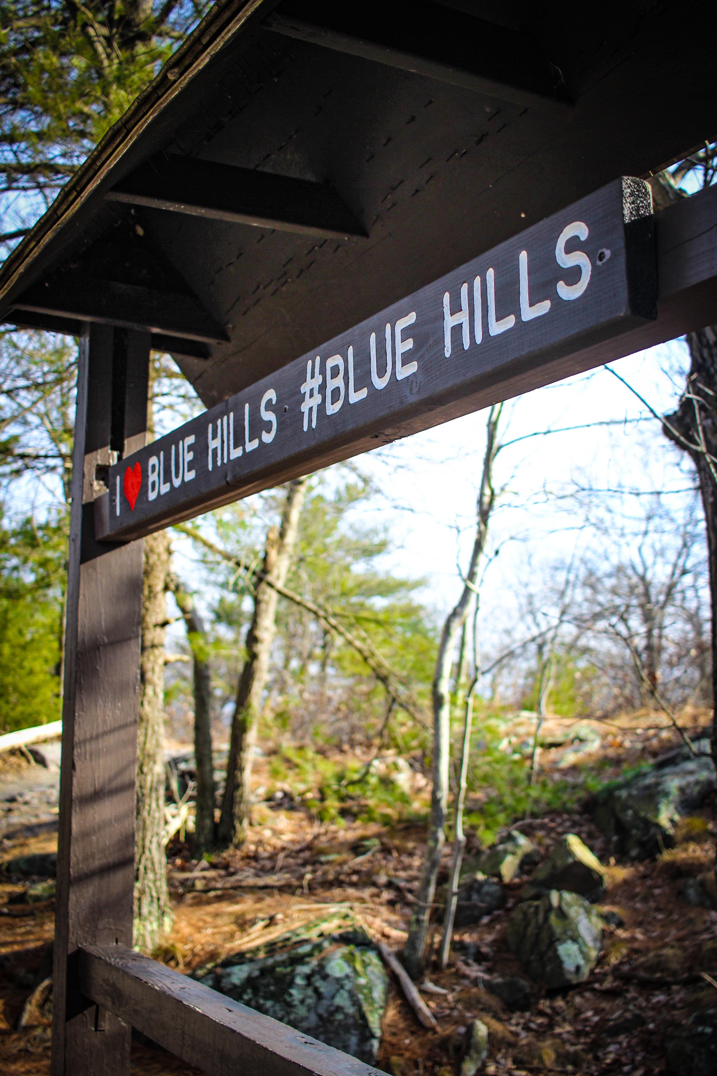 Blue Hills 2019 TWG-12.jpg