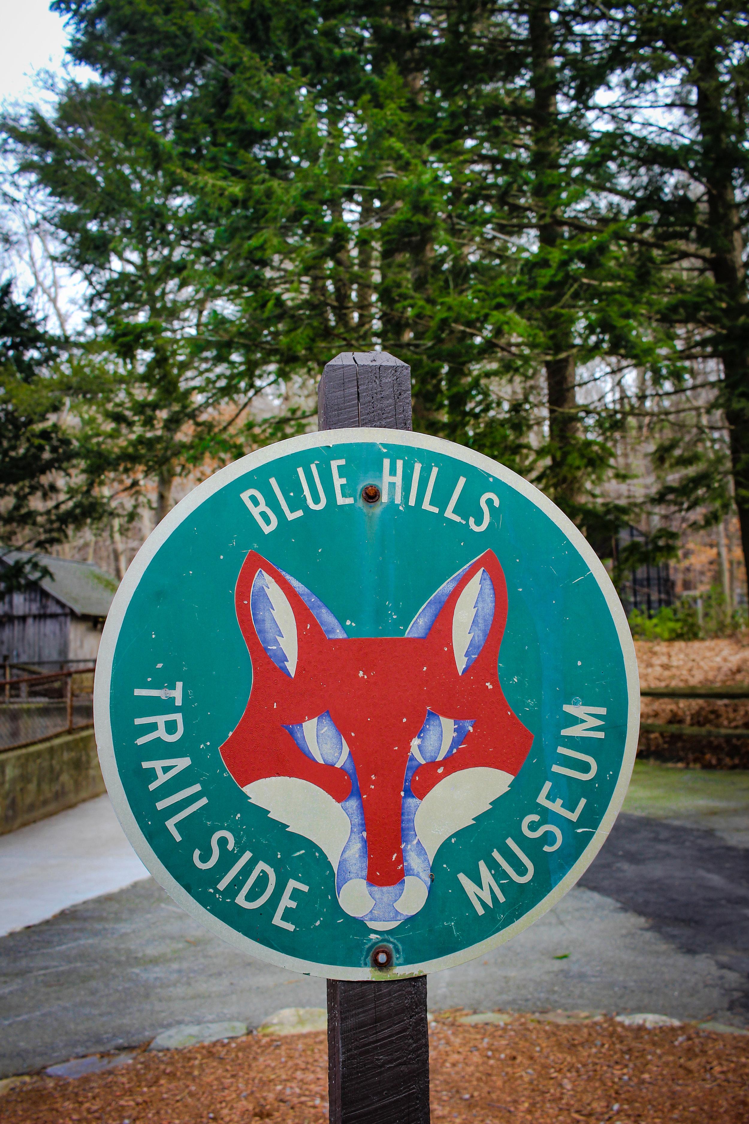 Blue Hills 2019 TWG-17.jpg