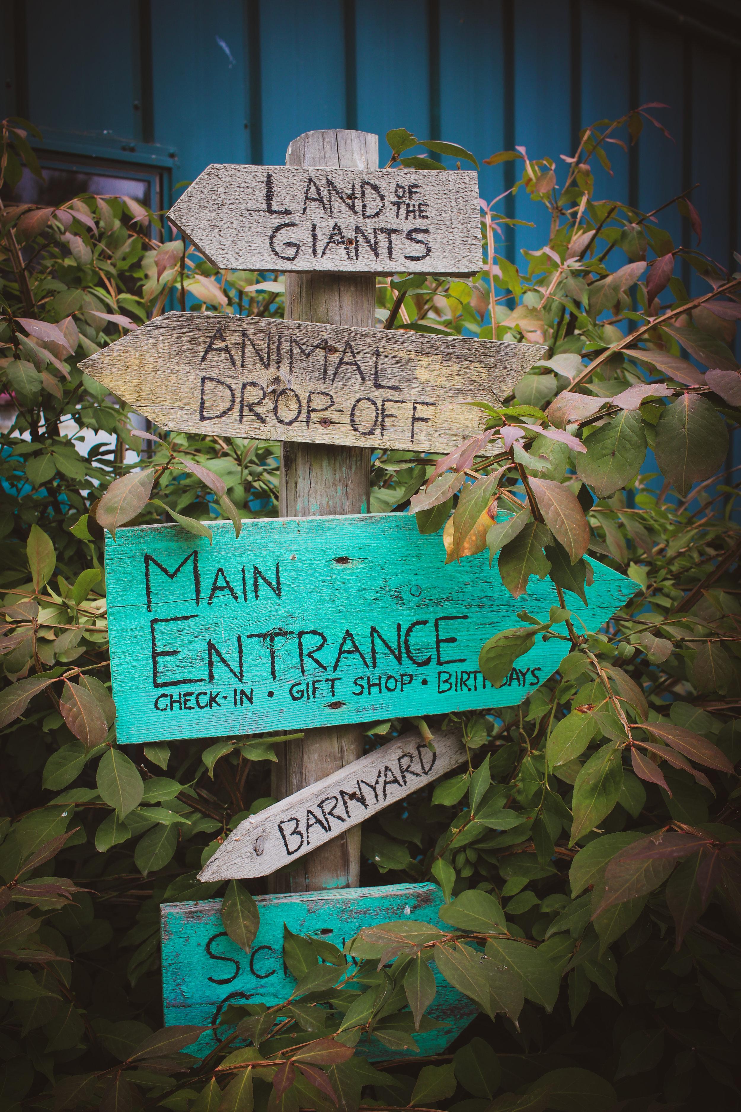 Animal Adventures - August 2019_.jpg