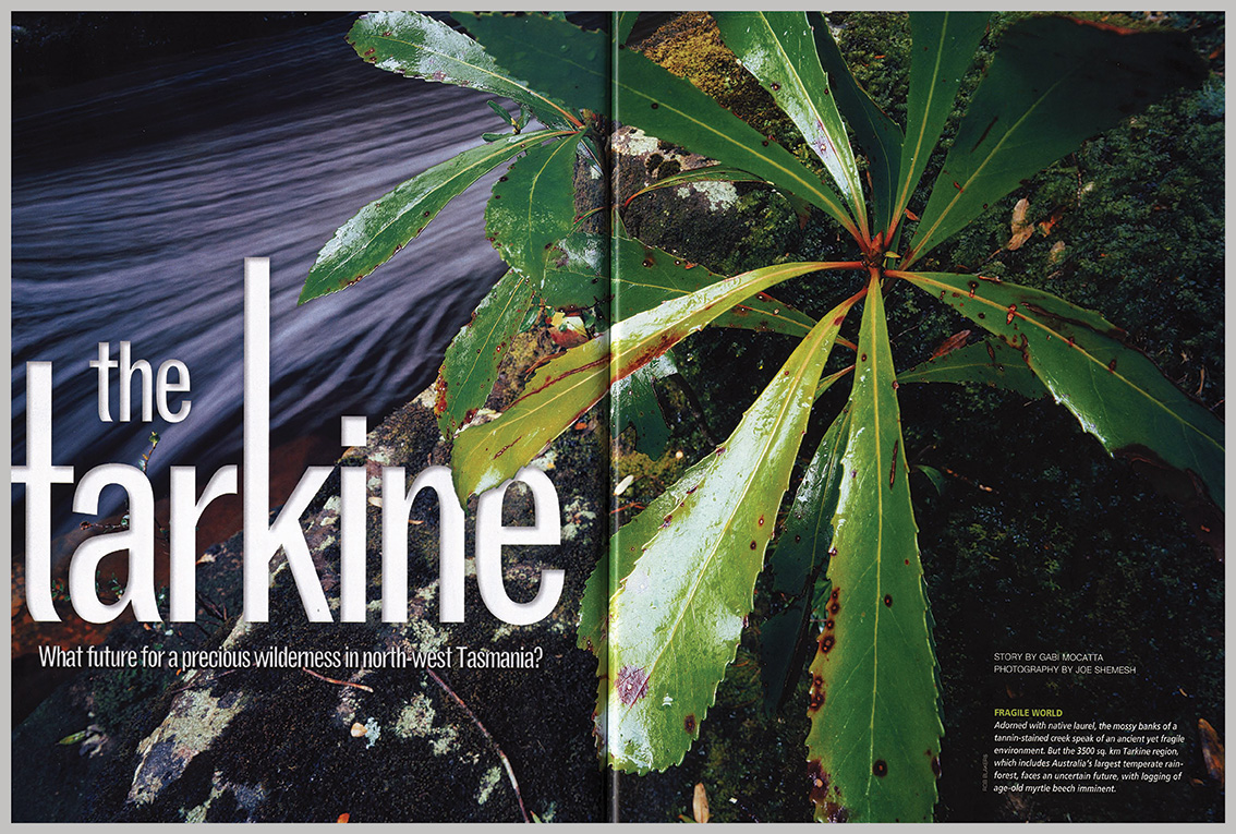 Australian Geographic – The Tarkine