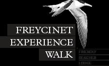 logo_freycinet.png