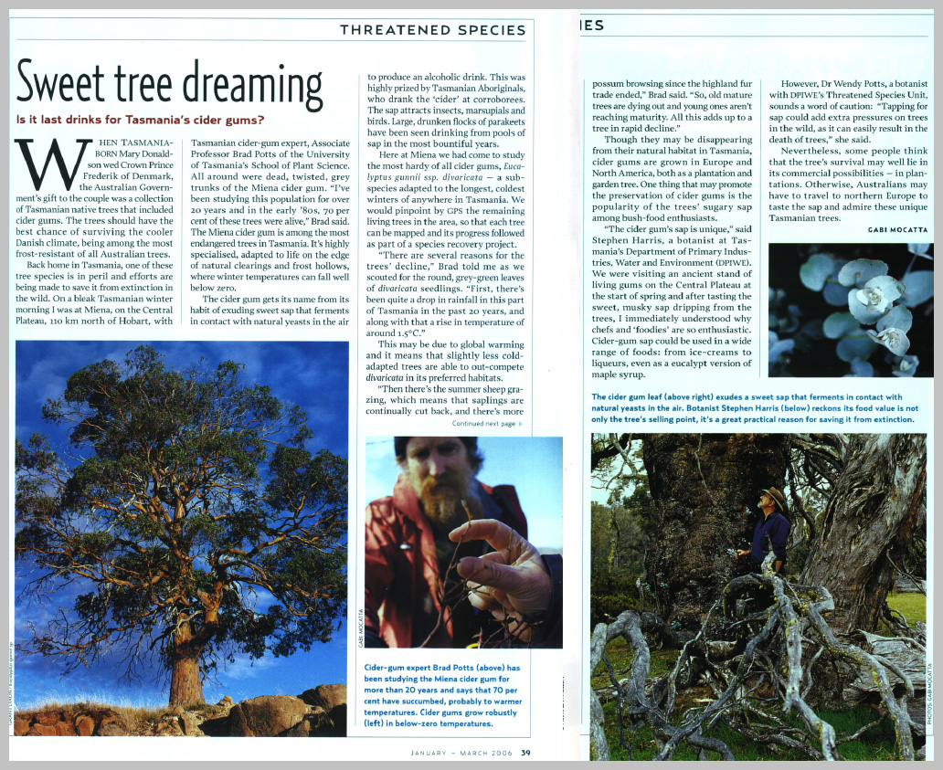 Australian Geographic — Sweet Tree Dreaming