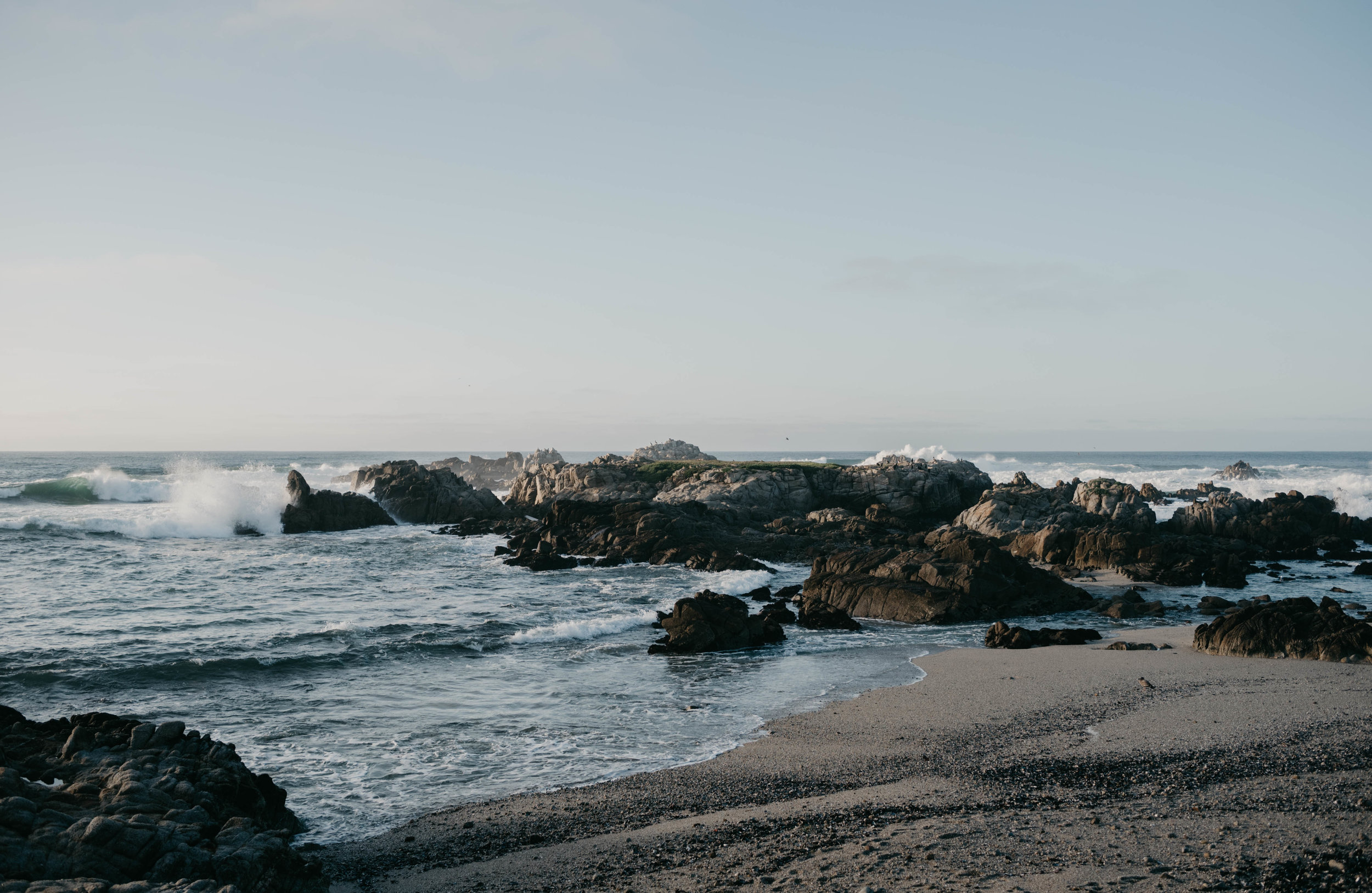 Along the coast in Monterey, CA.