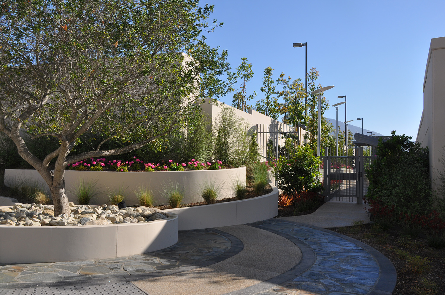Entry Plaza to Team Walkway