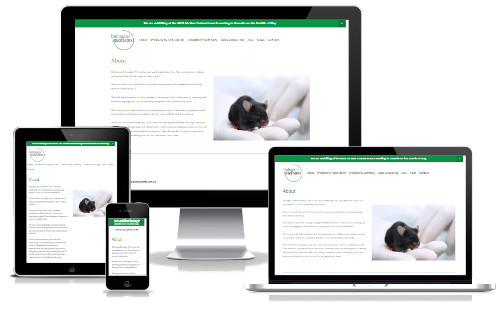 Biological Associates - Website build, Marketing Strategy