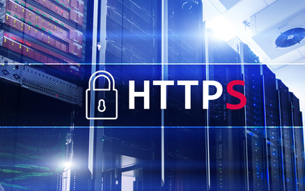 HTTPS, Secure data transfer protocol used on the World Wide Web.
