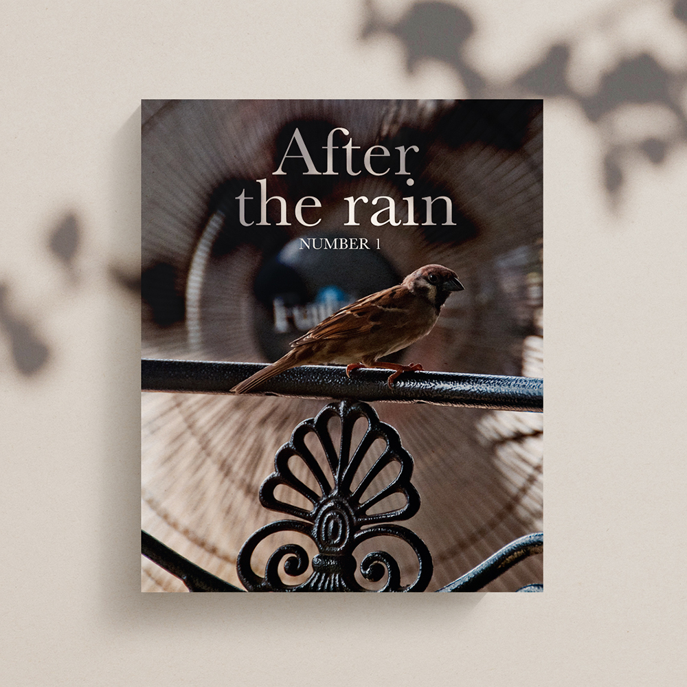 After The Rain Square Mockup.jpg