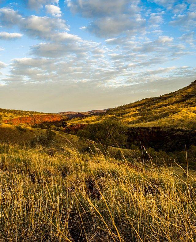 What a beautiful country we live in. . . . . . . . .  #freetowander #pilbaralife #seeaustralia #see_westernaustralia #perthisokay