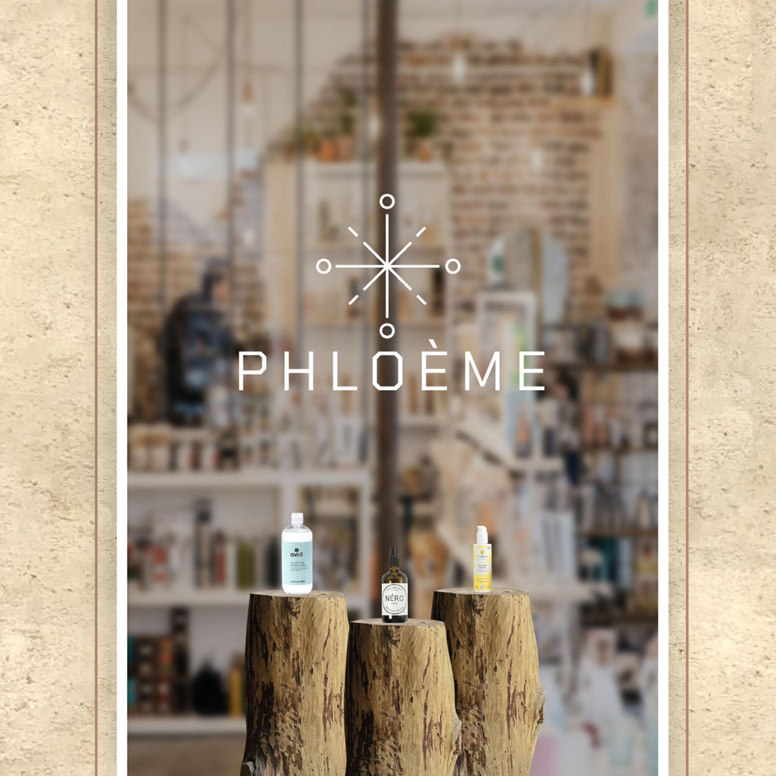 05_Phloeme.jpg