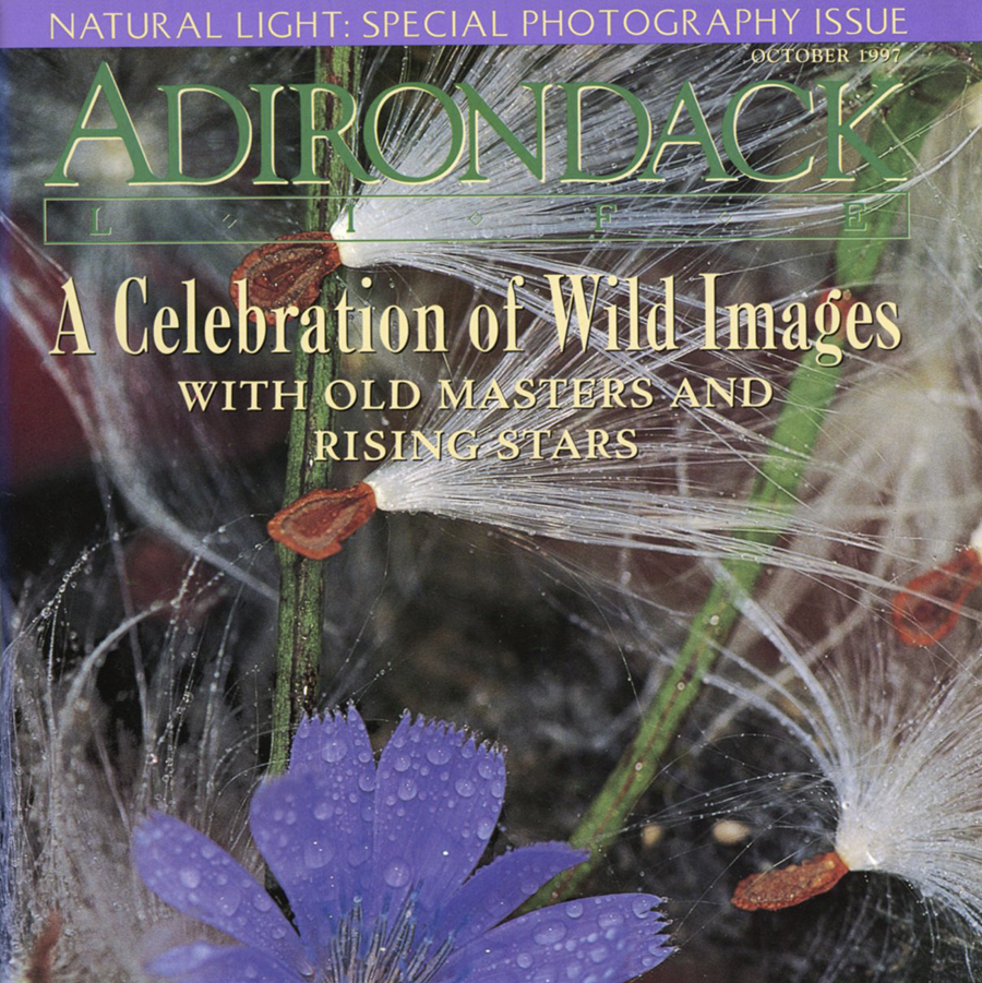 "Portfolio Published in Magazine   Adirondack Life,  ""New Views: Jane Alden Stevens"", October 1997 Profile of the artist and photographs taken by her in the Adirondack Mountains of New York State"