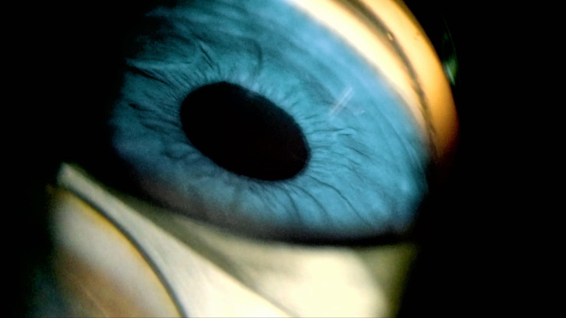 eyeball.jpg