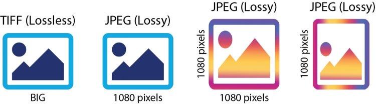 Files+types+copy.jpg