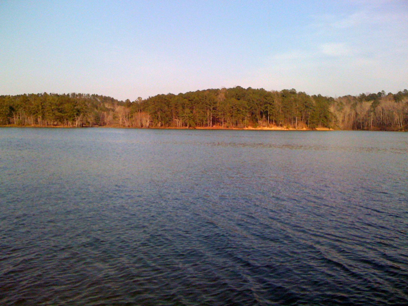 The Smith Lake School -