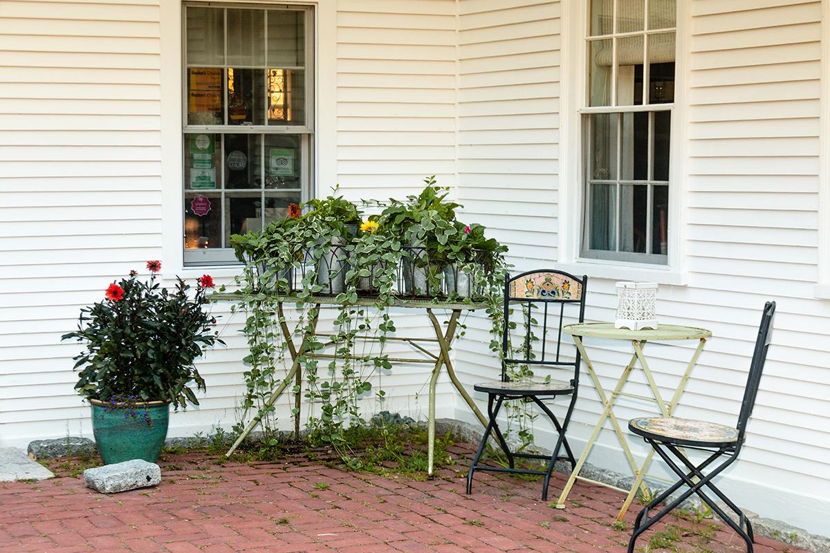 arborvine patio corner.jpg