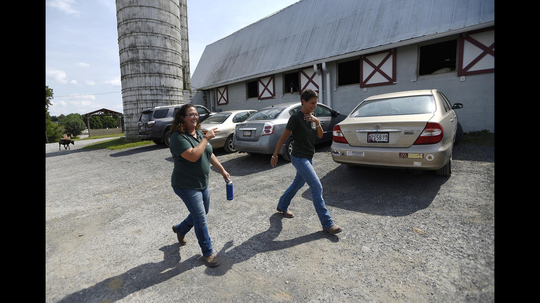 Executive Director Christine Hajek, left, and Director of Development Dawnn Double make their way through the grounds at Gentle Giants Draft Horse Rescue in Mount Airy Friday, July 13, 2018.
