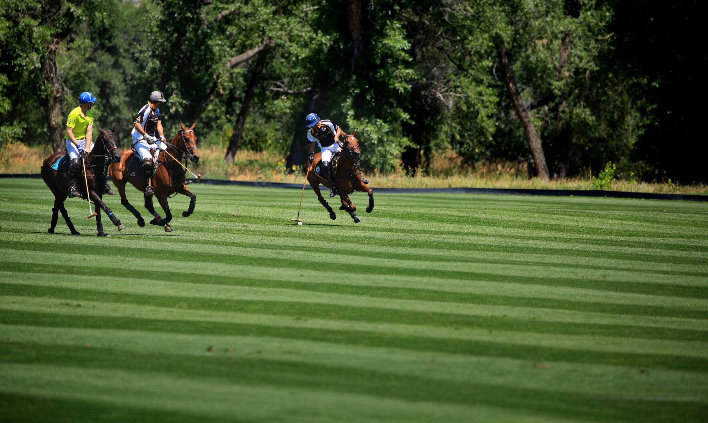 Denver Polo Club