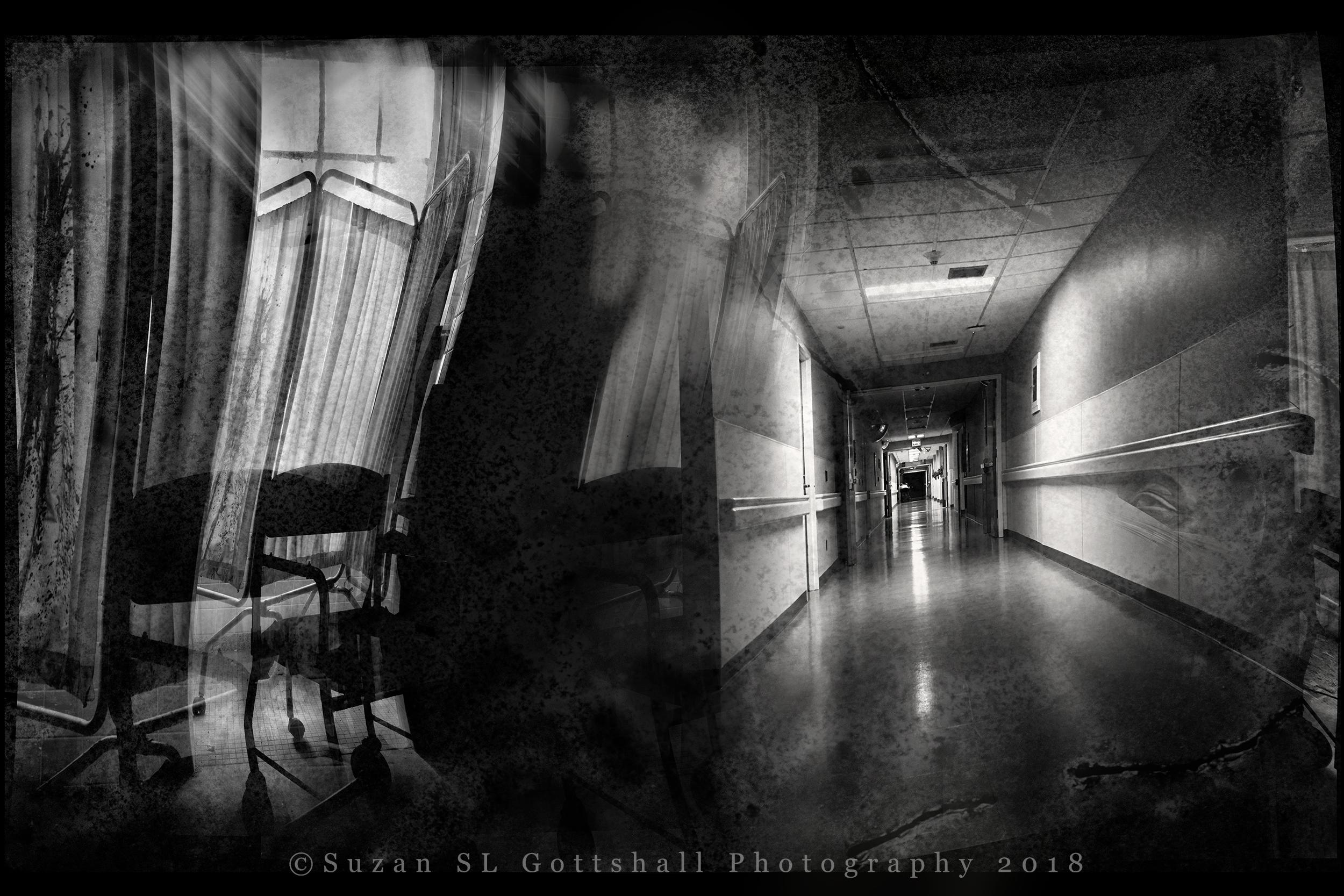 ws_dark_side_of_the_room_©suzanslgottshall_.jpg