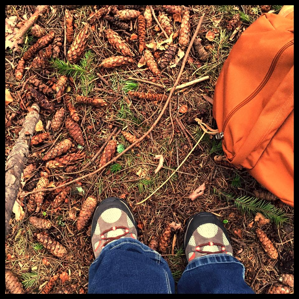 SPRING HIKE   THE PACIFIC CREST TRAIL