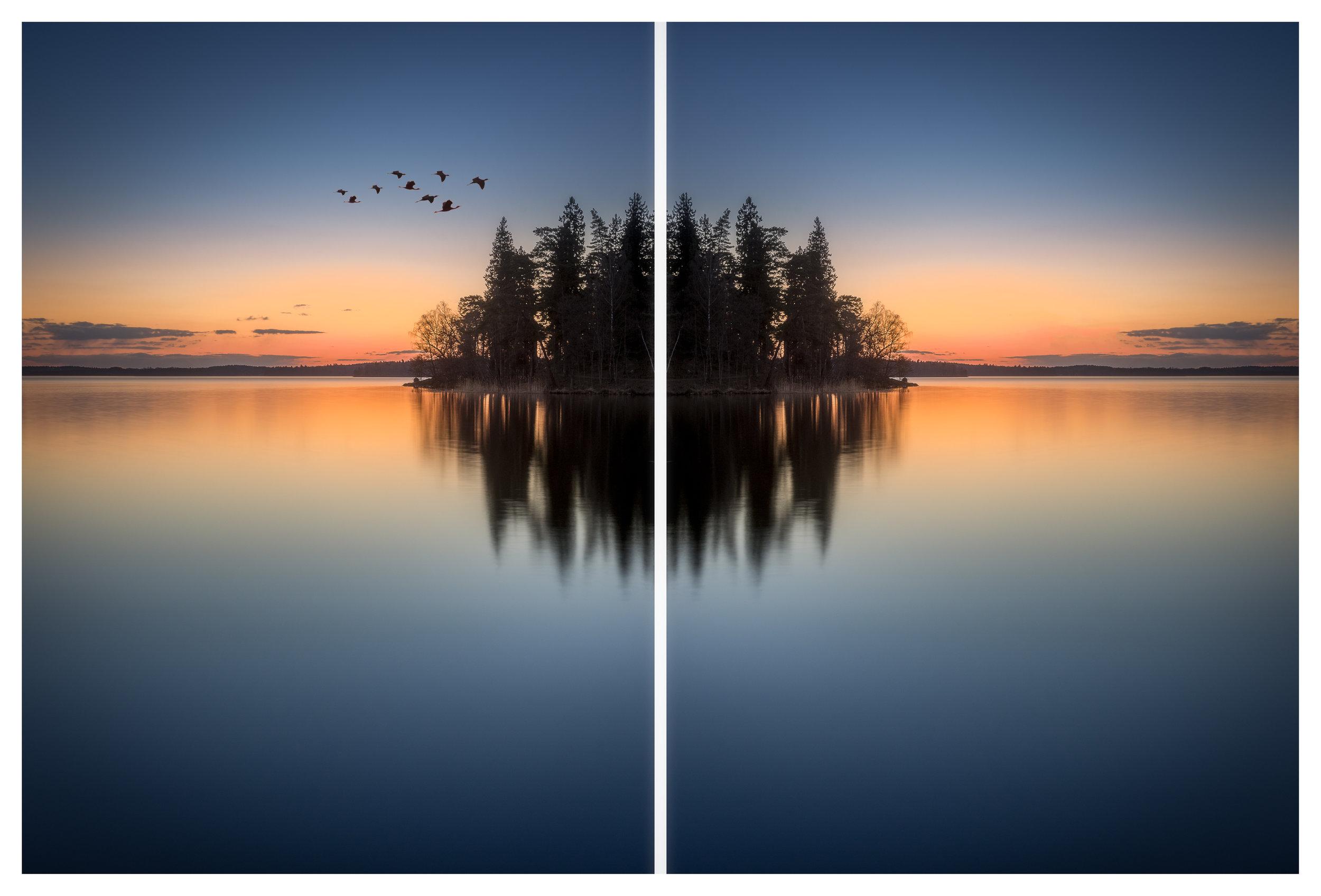 The birds in the opposite