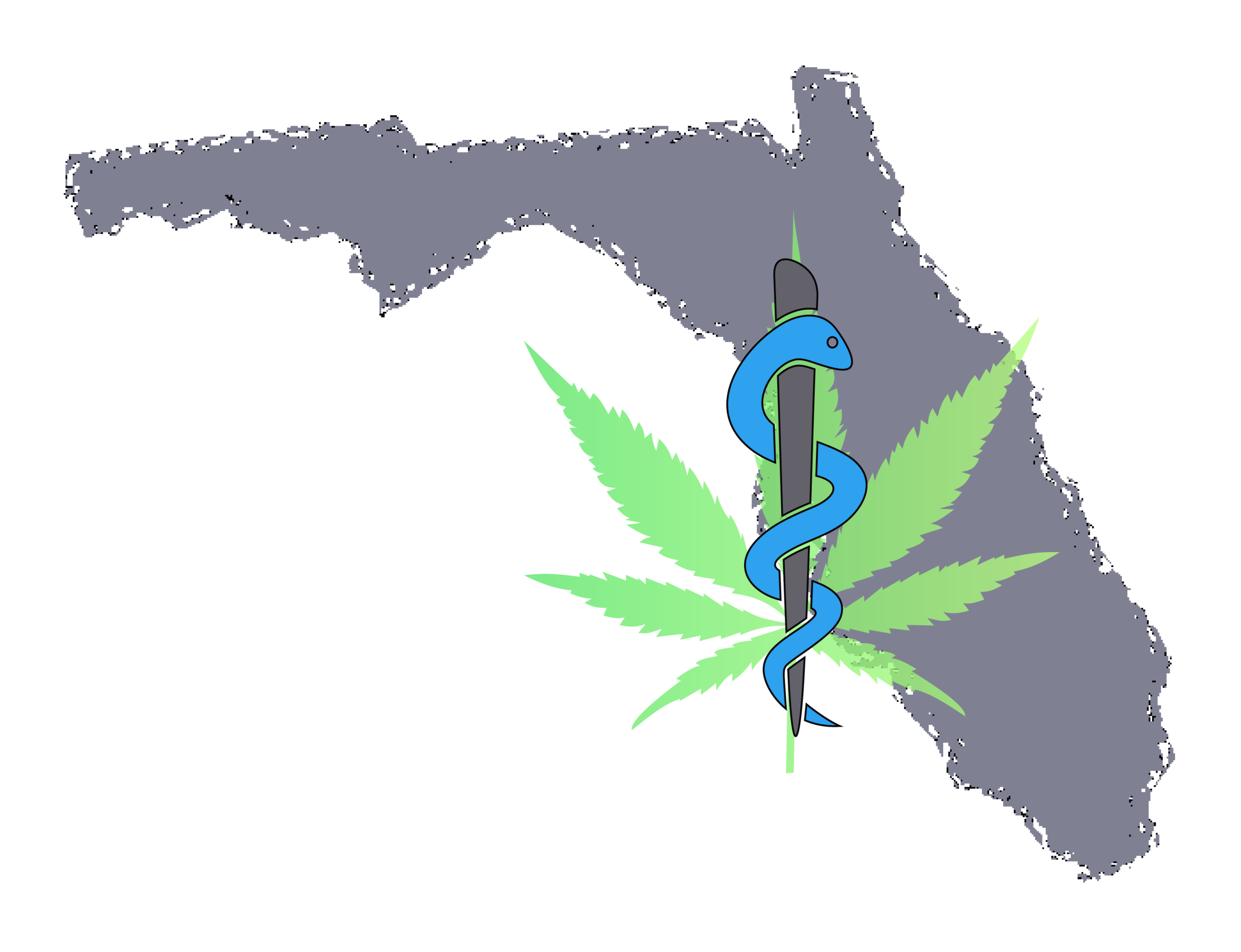 FloridaMedicalMarijuanaApplication.png