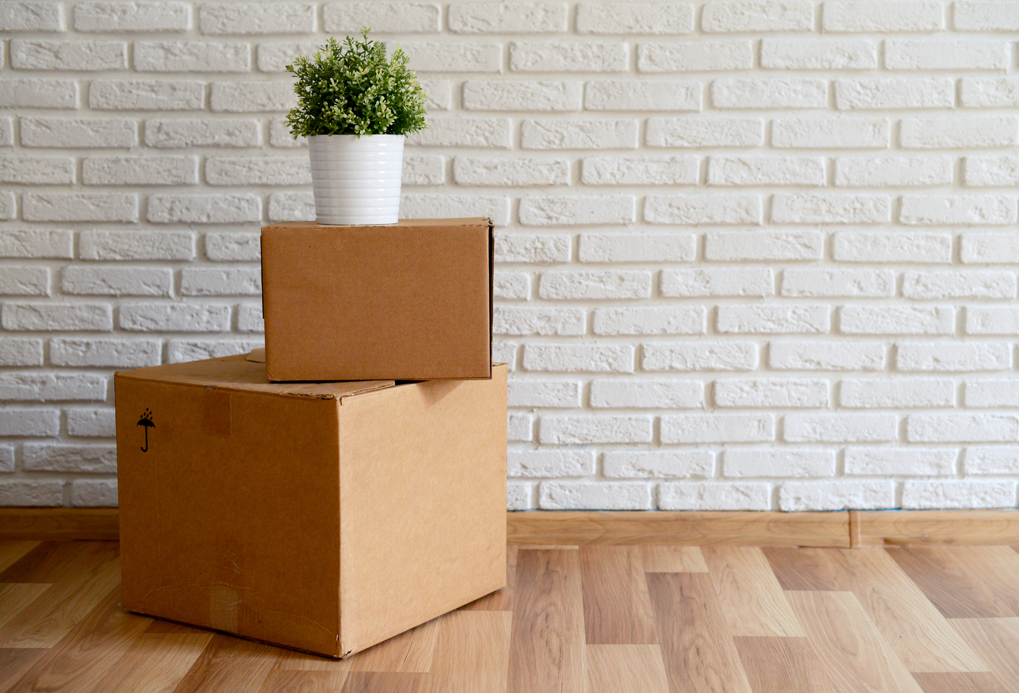 Nashville relocation services room with white painted brick wall with moving boxes and green plant on hardwood floor.