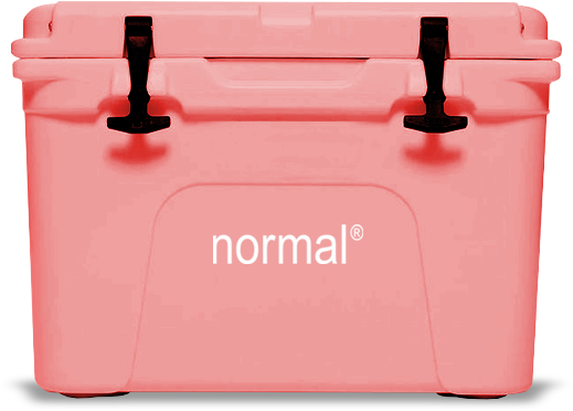pink cooler.png