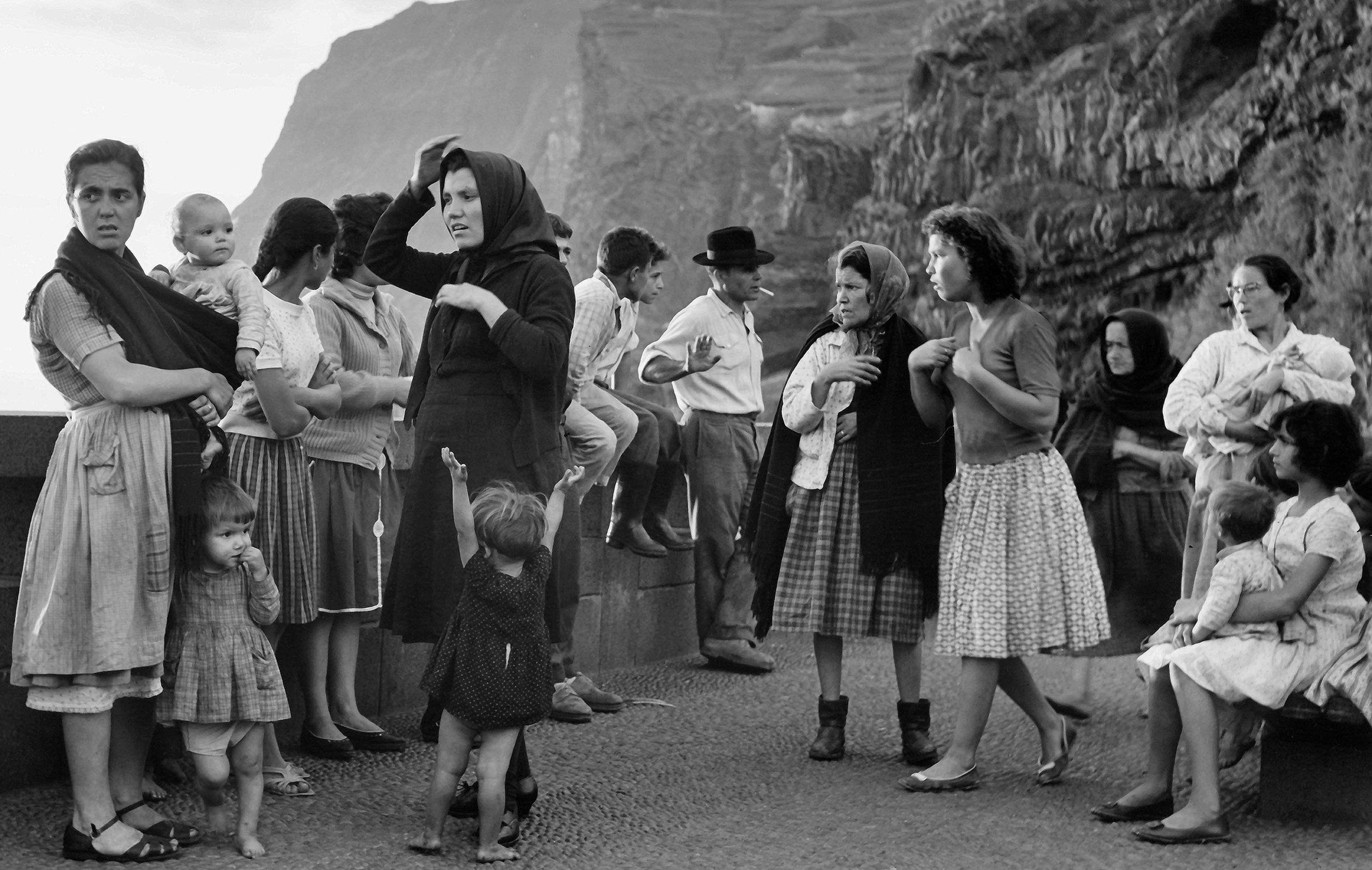 Web Microcosm of Life, Madeira copy.jpg