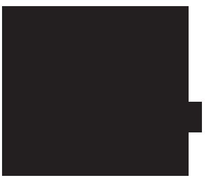 snow-leopard-trust-logo-better.png