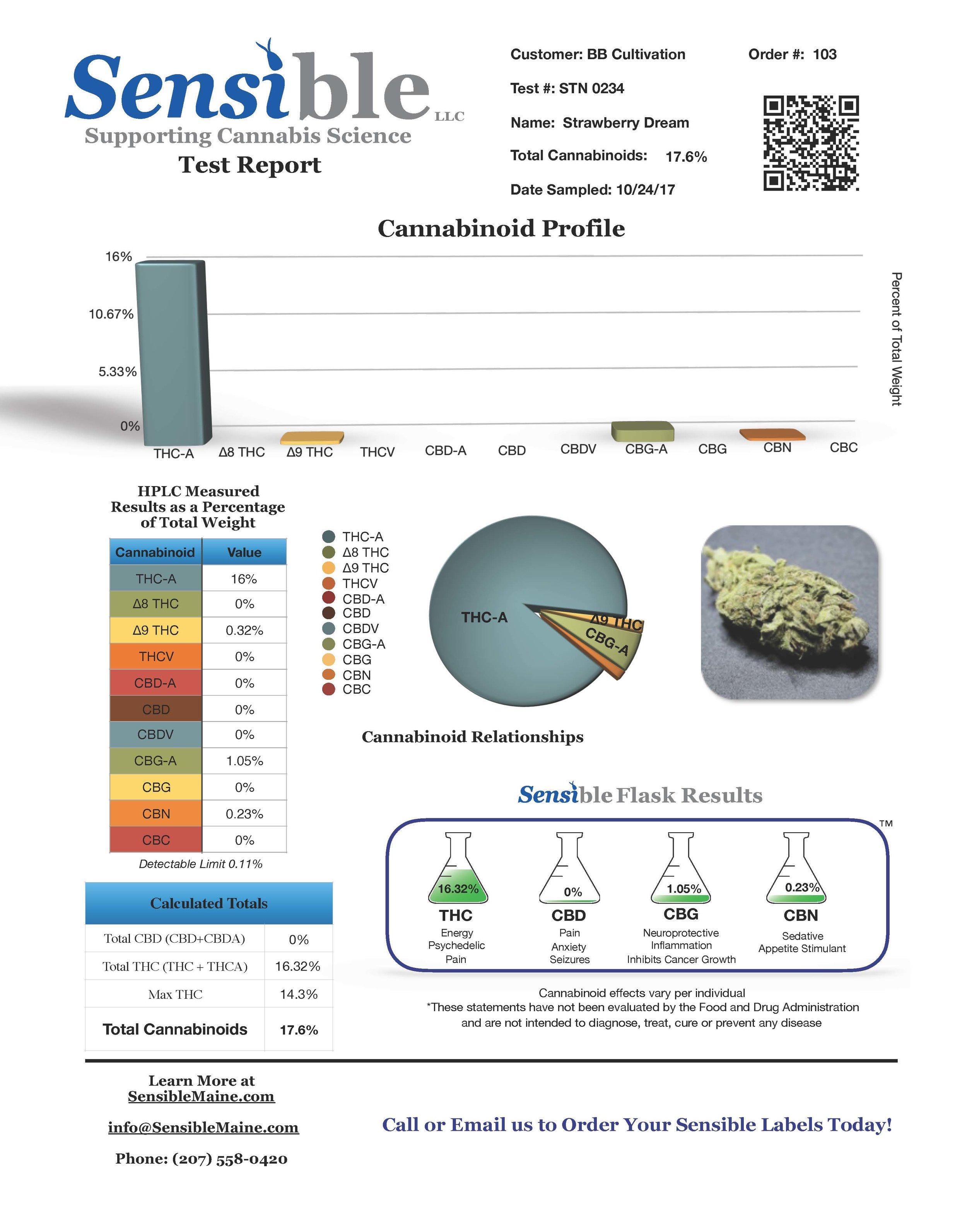 Test Report stn0234.jpg