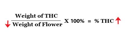 Equations down-03.jpg